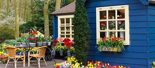 Negozio giardinaggio
