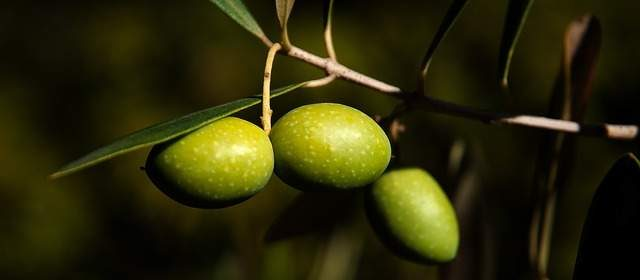 Olive gustose benefiche